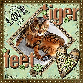 Copy of tiger feet