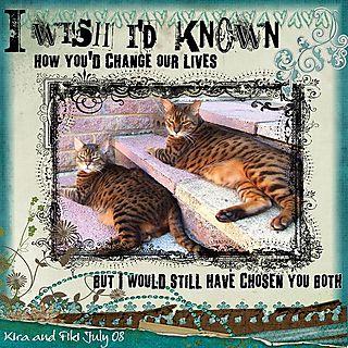 I wish I'd known