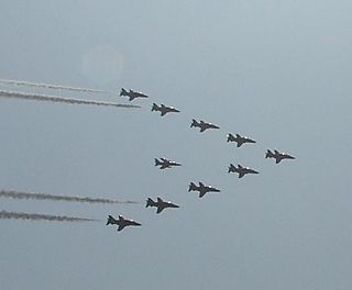 Red arrows and gnat