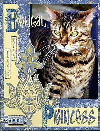 Bengal princess ccc