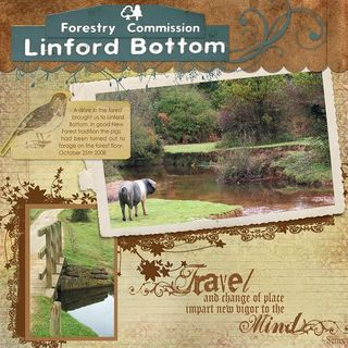Linford Bottom Sat Challenge