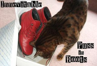 Puss in boots red