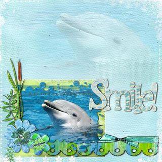 Dolphincopy