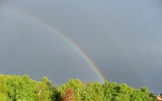 117 27 2 rainbow right red