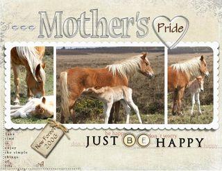 Mother's pride copy