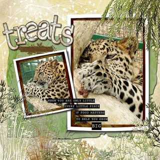 Page maps baby leopards copy