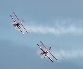 Red wing walkers 1