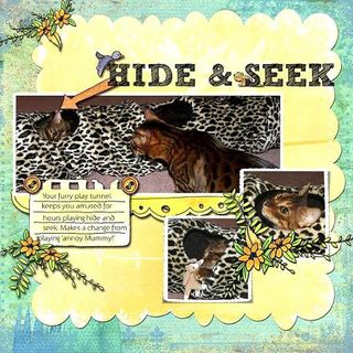 Hide and seek copy