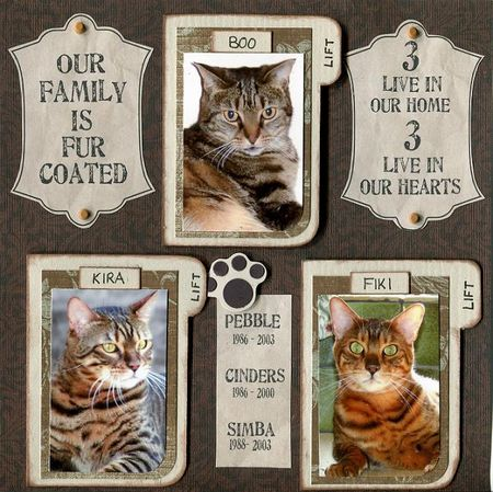 5210 week 05 cats