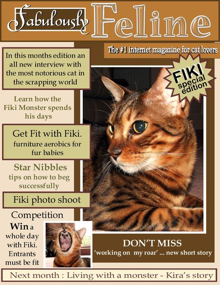 Interview with Fiki 1