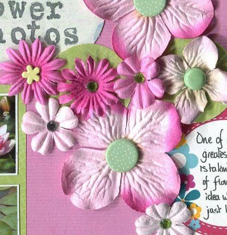 Celebrate flowers close