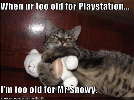 Funny-pictures-cat-is-not-too-old