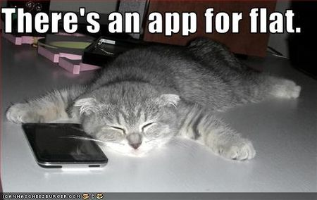 Funny-pictures-cat-has-an-iphone