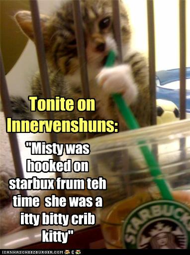 Funny-pictures-cat-likes-coffee