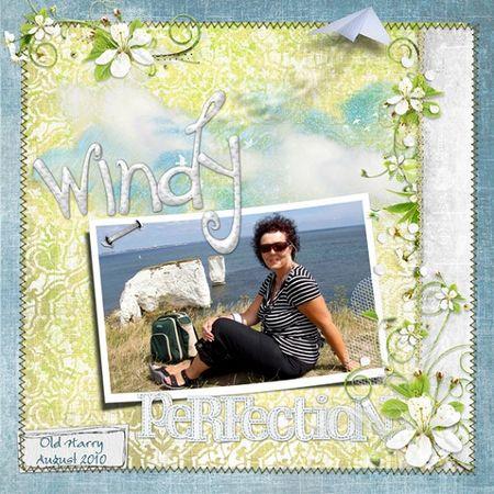 Windy-day