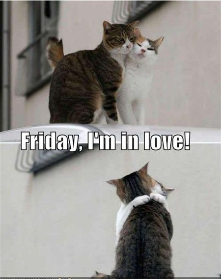 Friday in love