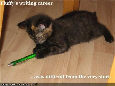 Funny-pictures-kitten-has-writing-career