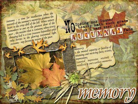 Memory web
