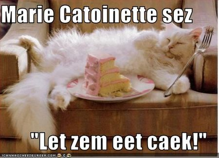Funny-pictures-cat-has-cake