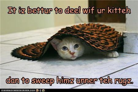 Funny-pictures-cat-is-under-rug
