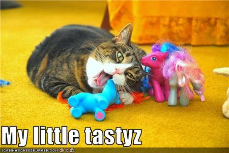 Funny-pictures-cat-eats-ponies