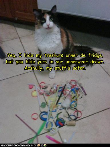 Funny-pictures-cat-hides-treasures