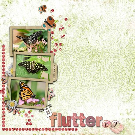 Meadow-butterfly