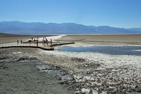 Red badwater