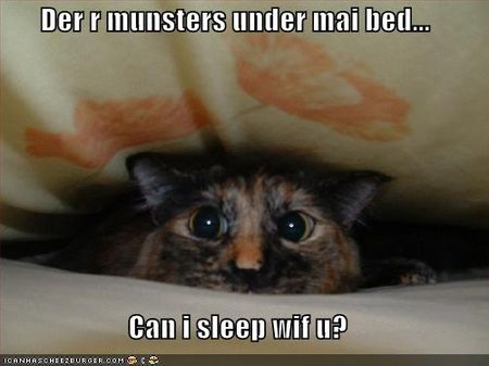 Funny-pictures-cat-is-scared-and-wants-to-sleep-with-you