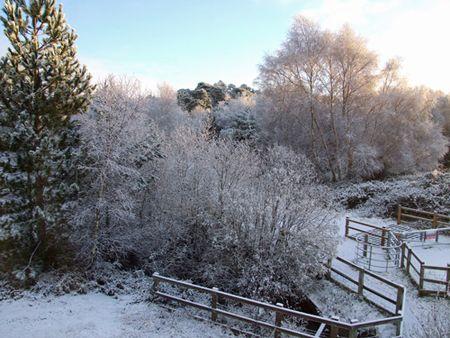 Snow-sun-2