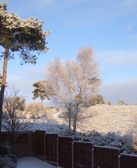 Snow-sun-3