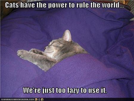 Control world