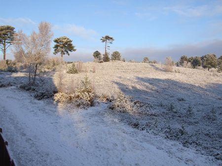 Snow-sun-1