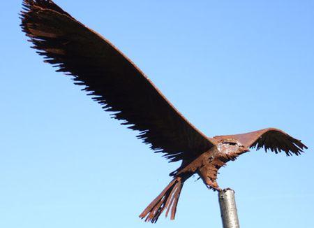 Hillier-hawk