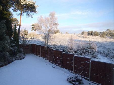 Snow-sun-5