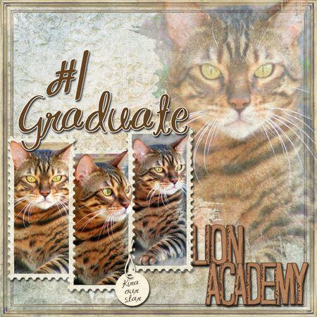 Lion-academy