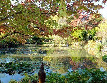 Hillier-pond-2