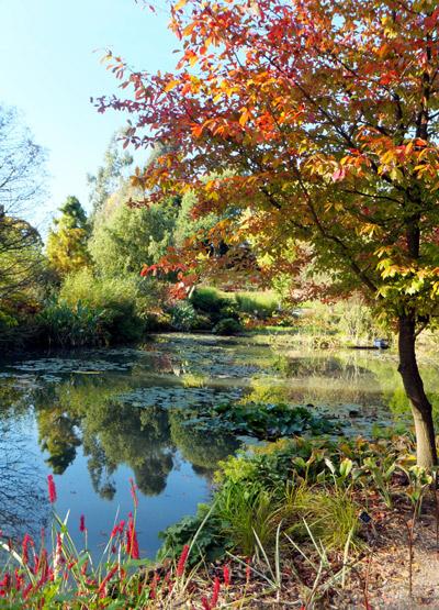 Hillier-pond