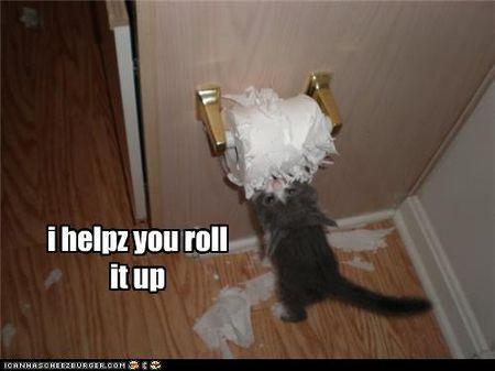 Loo roll