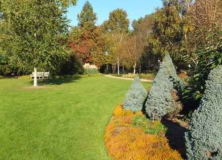 Hillier-winter-garden