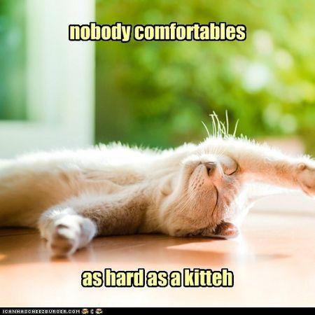 Comfortables