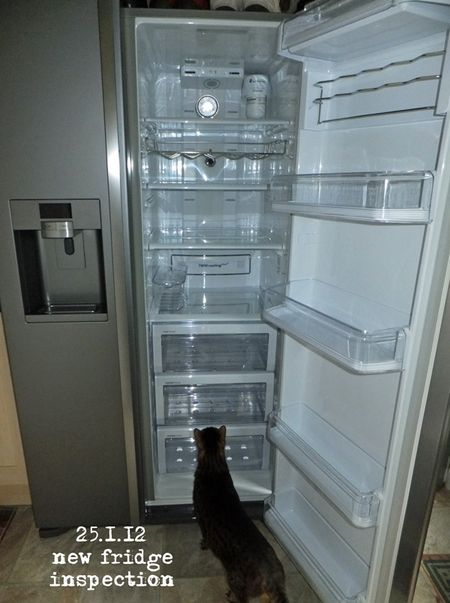 025-new-fridge