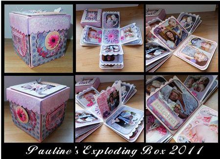 Pauline's 2011 box 1