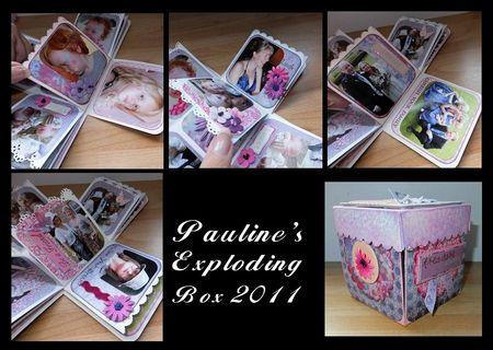 Pauline's 2011 box 2