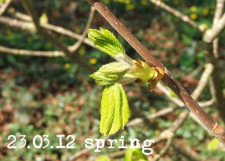 83-spring