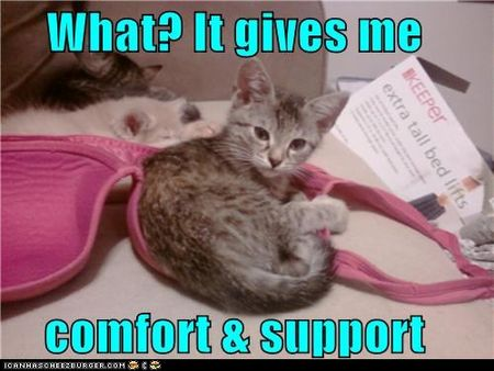 Comfort and support