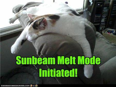 Sunbeam melt