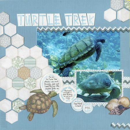 Turtle Trek