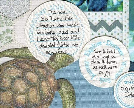 Turtle trek close 2