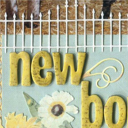 New born 2